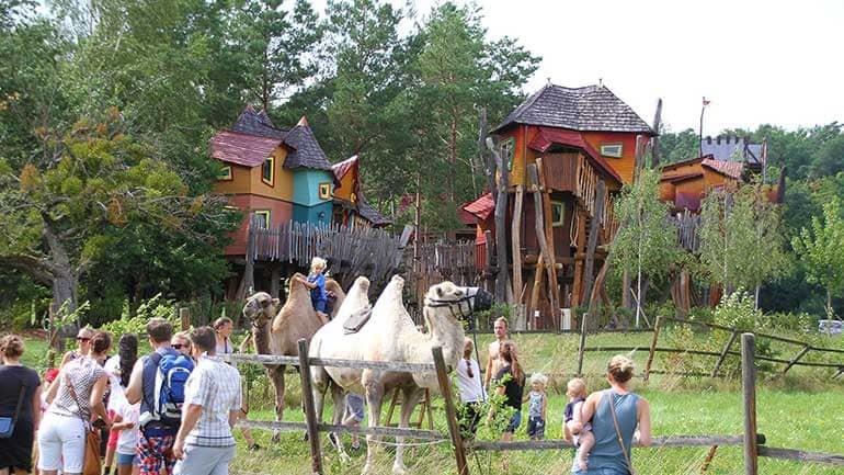 Kamelreiten Ativitäten